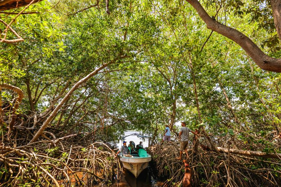 Ecoturismo en Lagunas de Chacahua