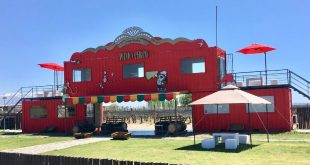 Wine y Circo de día